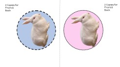 Rabbit template Pink Background
