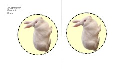 Rabbit Template Yellow Background